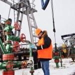 Worker in an oil field. — Stock Photo #29274367