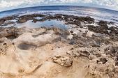Plaża skalista. — Zdjęcie stockowe
