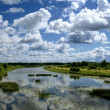 River under the blue sky — Stock Photo