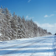 Winter road — Foto Stock