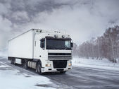 Freight transportation by truck — Stock Photo