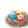 Stock Photo: Easter color eggs in nest