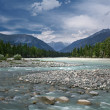 Mountain river in Altay — Stock Photo #41994143