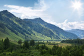 Mountain in Altay — Stock Photo