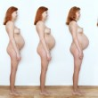 Collage pregnant woman beginning to end, nine  months, nine stat — Stock Photo #48034669