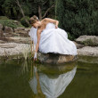 Beautiful bride - Foto de Stock