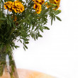 Marigold bouquet — Stock Photo