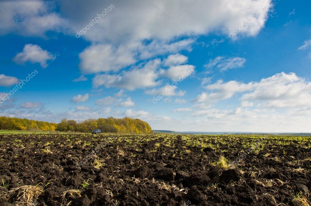 Car driving on a road through the field — Stock Photo #14062119