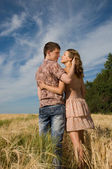 Loving couple kissing on wheat field — Stock Photo