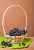 Wine grapes in basket — Stock Photo