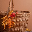 Rowanberry and basket — Stock Photo