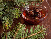 Confiture from fir cones — ストック写真