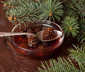 Confiture from fir cones — Stockfoto