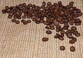 Coffee beans on burlap — Stock Photo
