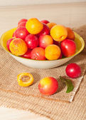 Cherry-plums and apricots — Stock Photo