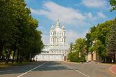 Klasický katedrála v st petersburg — Stock fotografie