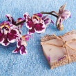 Pink orchid and soap — Stock Photo #49954983