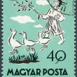 HUNGARY - 1959: shows Matt, the Goose Boy — Stock Photo