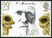 GREAT BRITAIN - 1982: shows Charles Darwin and Skulls, Death Centenary of Charles Darwin (1809-1882) — Stock Photo