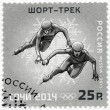 RUSSIA - 2011: shows XXII Olympic Winter Games in Sochi 2014, Olympic winter Sports, Short track — Stock Photo