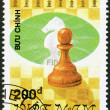 VIETNAM - 1991: shows Pawn, series Chess pieces — Stockfoto #13762481