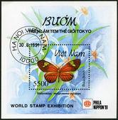 VIETNAM - 1991: shows Heliconius melpomene-aglaope — Stock Photo