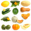 Vegetable and fruits collection (Cucurbitales) — Stock Photo