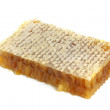 Stock Photo: Honeycombs with honey