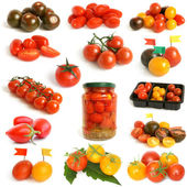 Tomatoes collection — Stock Photo