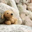 Old plush toy dog abandoned on a stone — Stock Photo