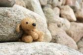 Old plush toy dog abandoned on a stone — Stock Photo