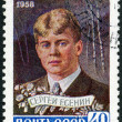 USSR - 1958: shows Sergei Yesenin (1895-1925), Poet — Stock Photo #19558667