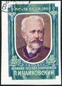USSR - 1958: shows Pyotr Ilyich Tchaikovsky (1840-1893), pianist — Stock Photo