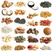 Colección de frutos secos — Foto de Stock