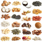 Nuts collection — 图库照片