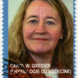 Stock Photo: CONGO - 2010: shows Carol W. Greider, series Nobel Prize winners