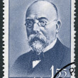 ROMANIA - 1960: shows Robert Koch (1843-1910) - Stock Photo