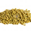 mung beans — Stock Photo