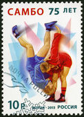 RUSSIA - 2013: dedicated the 75 Years of Sambo — Stok fotoğraf
