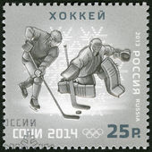 RUSSIA - 2013: shows XXII Olympic Winter Games in Sochi 2014, Olympic winter Sports, ice hockey — Stock Photo