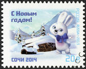 RUSSIA - 2013: shows Mascot of XXII Olympic Games in Sochi 2014 - Hare (Zayka) — Stock Photo