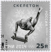 RUSSIA - 2012: shows XXII Olympic Winter Games in Sochi 2014, Olympic winter Sports, skeleton — Stock Photo