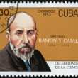 Stock Photo: CUB- 1993: shows portrait of Santiago Ramon y Cajal (1852-1934), histologist