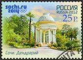 RUSSIA - 2012: shows Arboretum, Russian Black Sea coast tourism,  Russian Black Sea coast tourism, XXII Olympic Winter Games 2014 in Sochi — Stock Photo