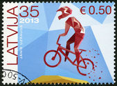 LATVIA - 2013: shows BMX Racer — Stock Photo