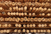 Rows of timber at a sawmill — Stock Photo