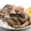 Seafood — Stock Photo