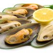 New Zealand green mussels — Stock Photo