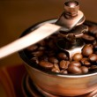 Coffee Mill — Foto de Stock   #12612989
