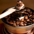 Coffee Mill — Stock Photo #12612990